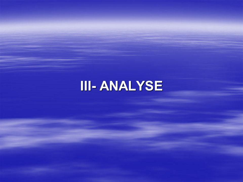 III- ANALYSE
