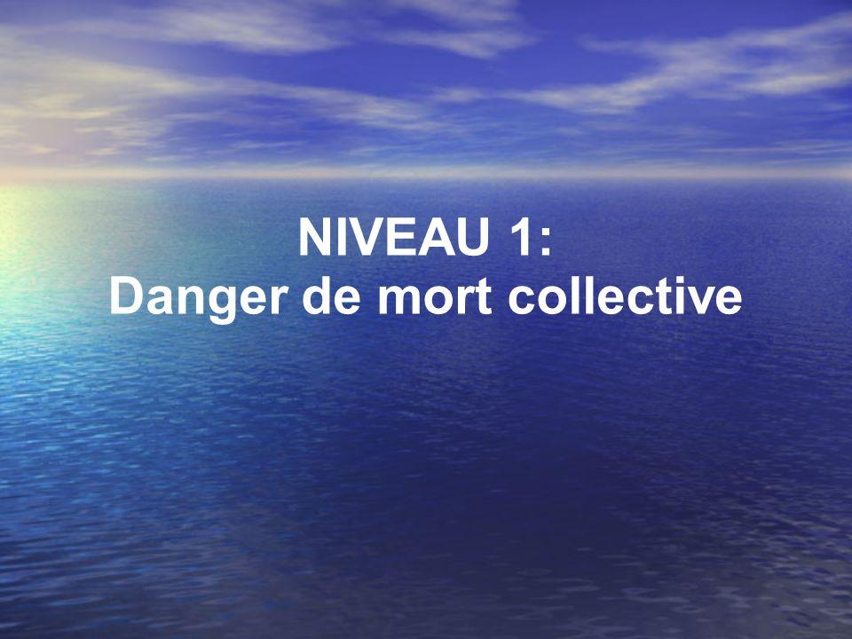 NIVEAU 5 : LA MUTATION DU POLITIQUE