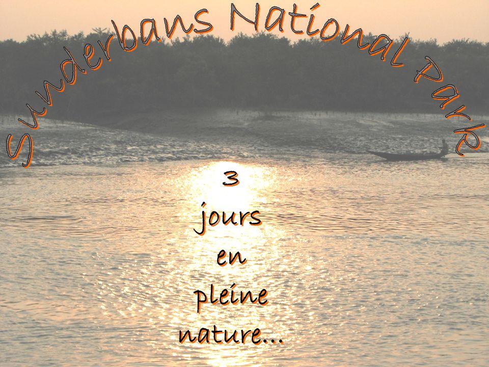 3 jours en pleine nature… 3 jours en pleine nature…