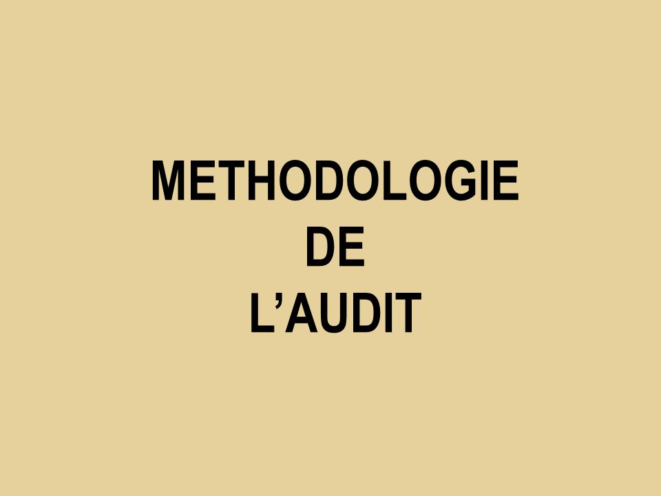 METHODOLOGIE DE LAUDIT