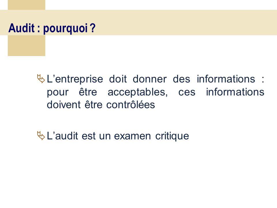 11 Audit : pourquoi ? Lentreprise doit donner des informations : pour être acceptables, ces informations doivent être contrôlées Laudit est un examen