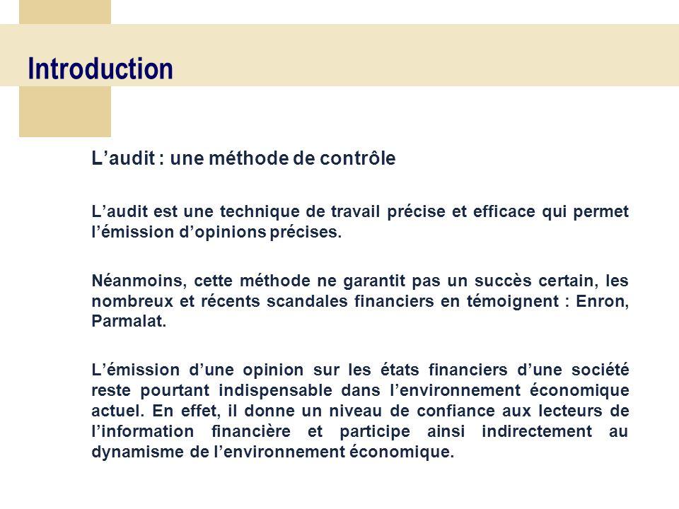 8 Introduction Laudit : une méthode de contrôle Laudit est une technique de travail précise et efficace qui permet lémission dopinions précises.