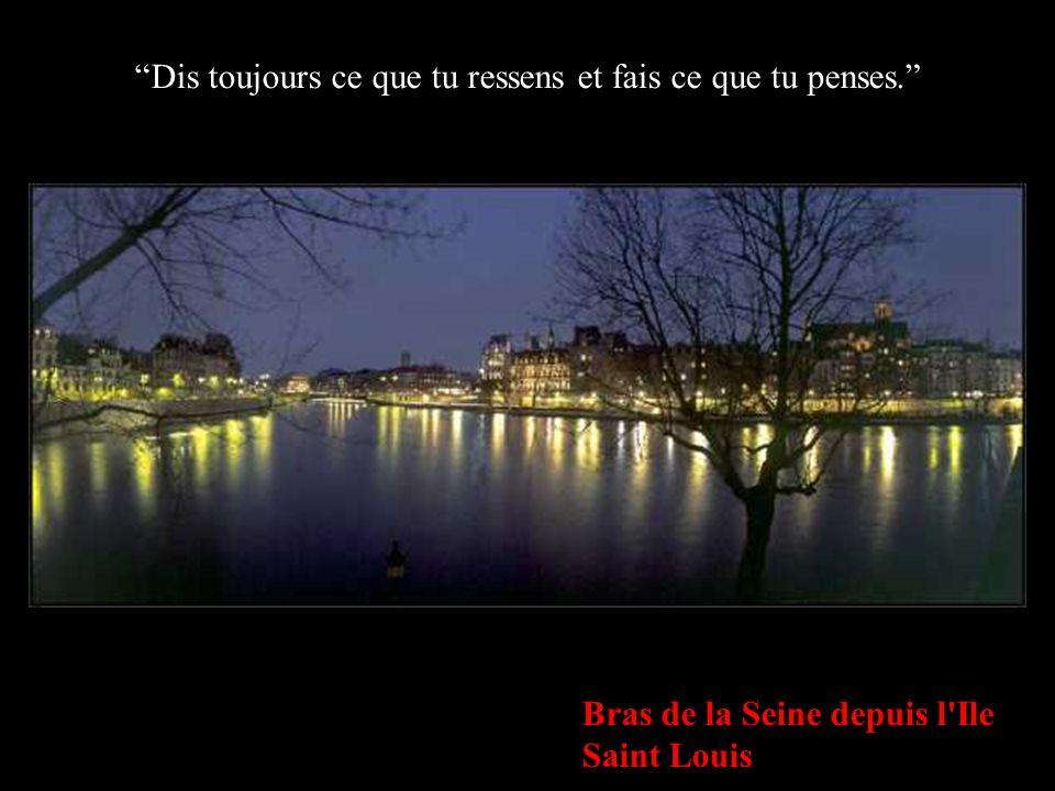 Bras de la Seine depuis l'Ile Saint Louis Dis toujours ce que tu ressens et fais ce que tu penses.