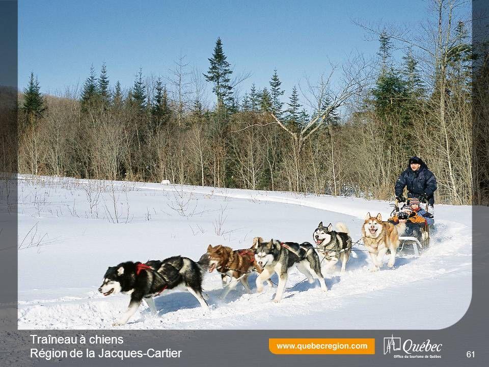 Traîneau à chiens Région de la Jacques-Cartier 61
