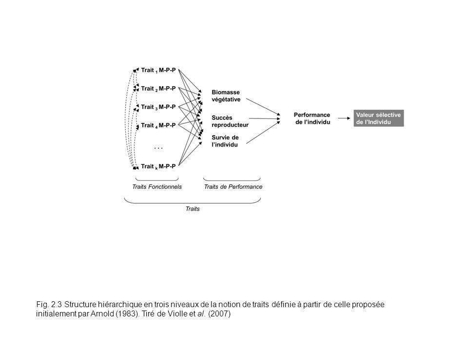 Fig. 2.3 Structure hiérarchique en trois niveaux de la notion de traits définie à partir de celle proposée initialement par Arnold (1983). Tiré de Vio