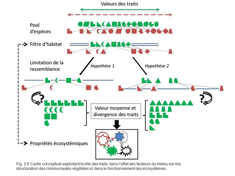 Fig. 2.6 Cadre conceptuel explicitant le rôle des traits dans leffet des facteurs du milieu sur ma structuration des communautés végétales et dans le