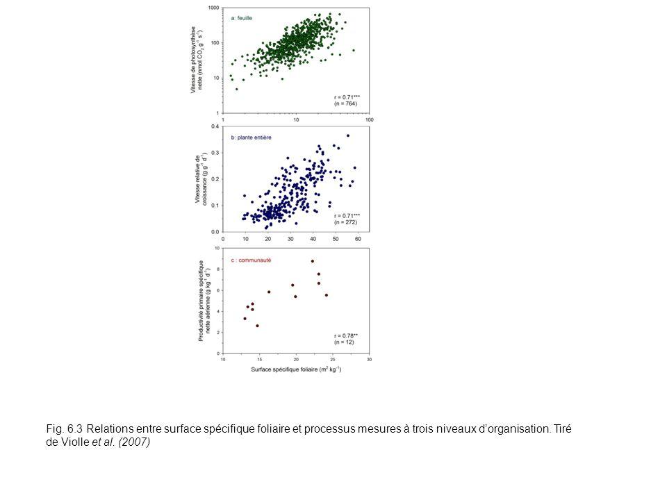 Fig. 6.3 Relations entre surface spécifique foliaire et processus mesures à trois niveaux dorganisation. Tiré de Violle et al. (2007)