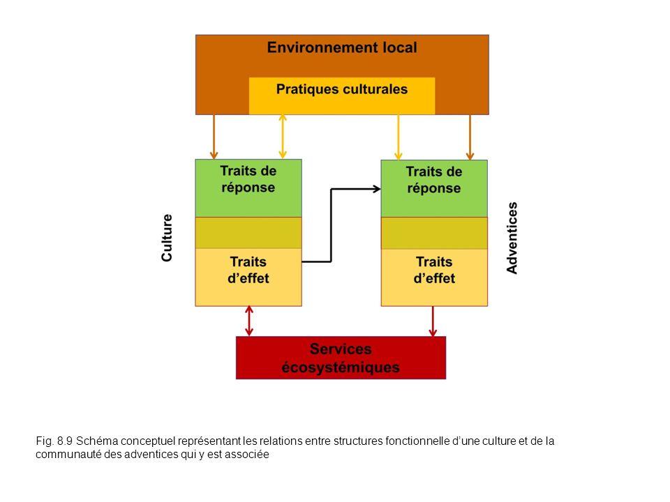 Fig. 8.9 Schéma conceptuel représentant les relations entre structures fonctionnelle dune culture et de la communauté des adventices qui y est associé