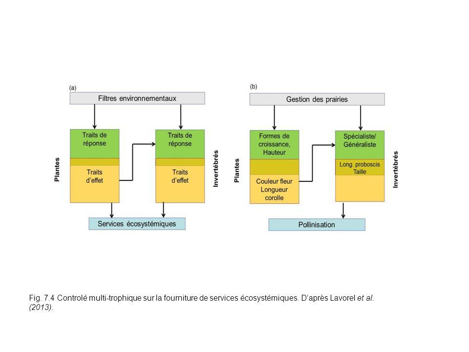 Fig. 7.4 Controlé multi-trophique sur la fourniture de services écosystémiques. Daprès Lavorel et al. (2013).
