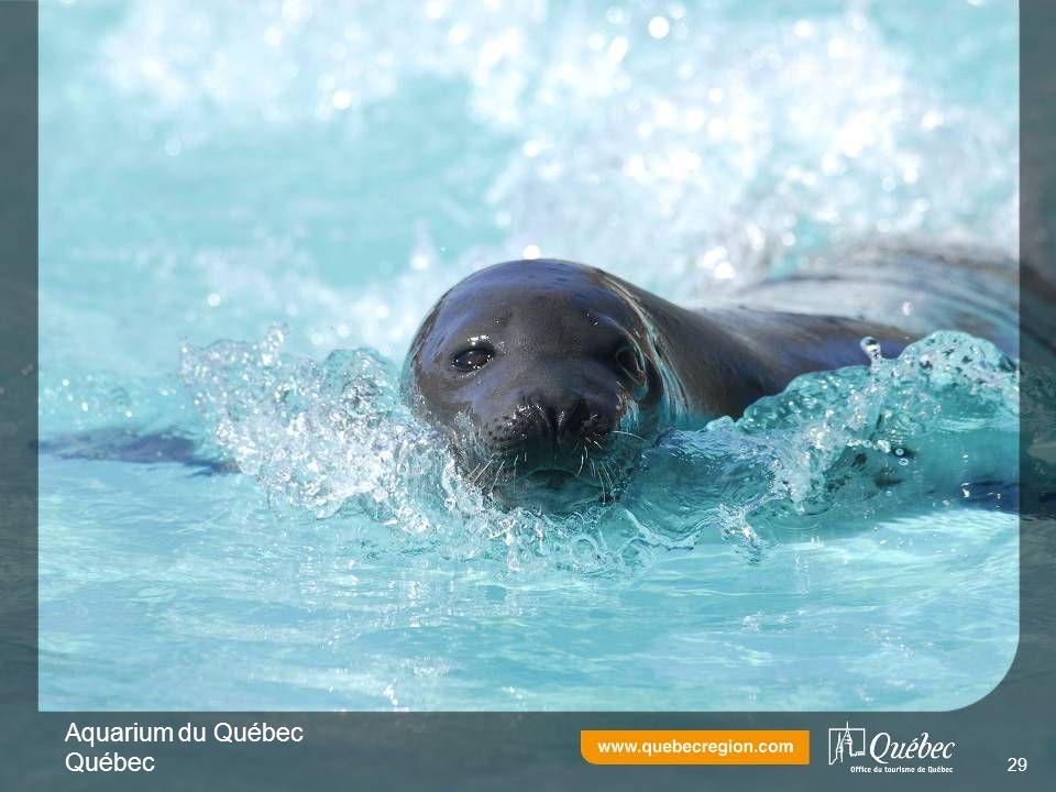 Aquarium du Québec Québec 29