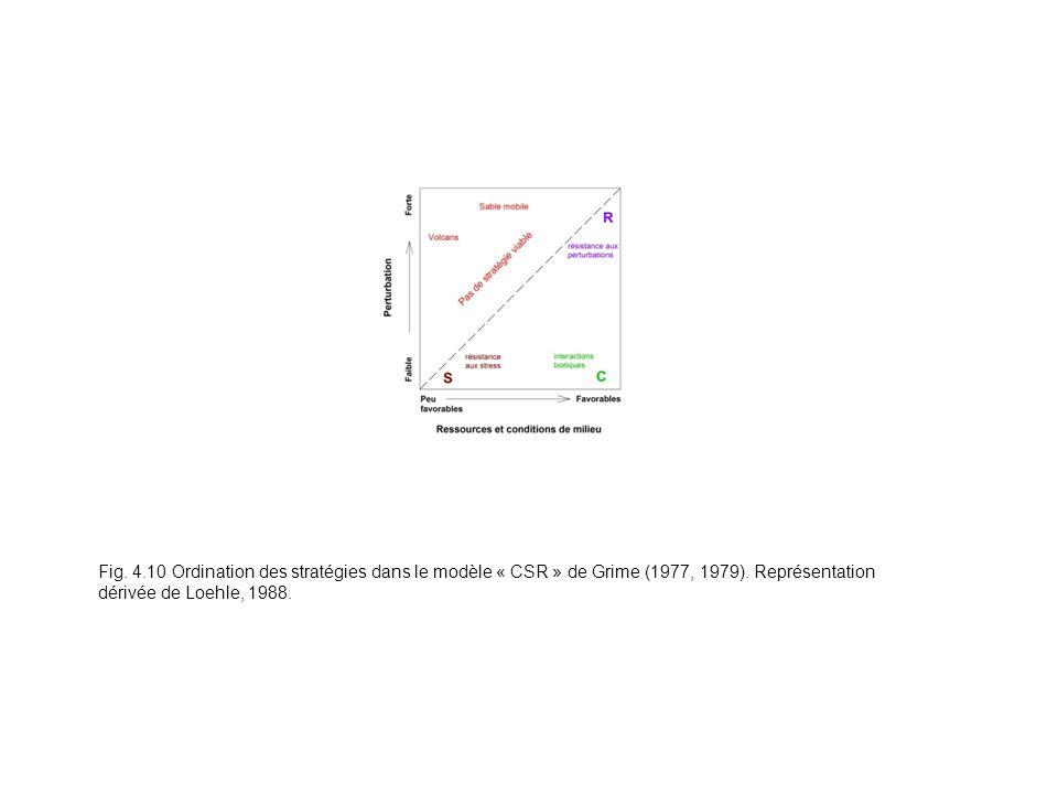 Fig. 4.10 Ordination des stratégies dans le modèle « CSR » de Grime (1977, 1979). Représentation dérivée de Loehle, 1988.