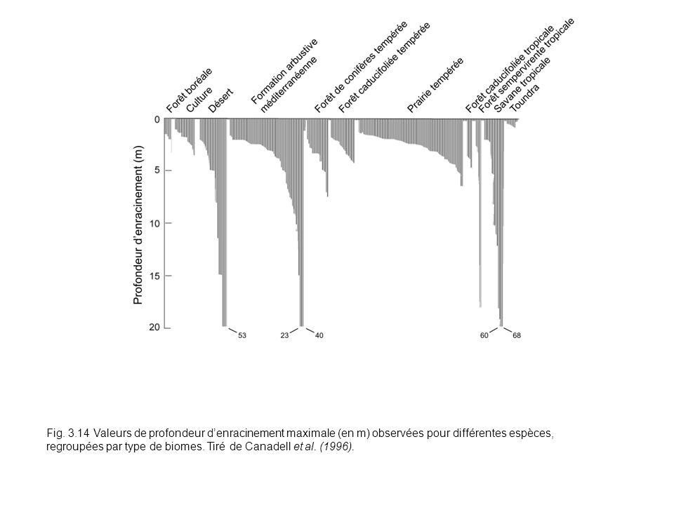 Fig. 3.14 Valeurs de profondeur denracinement maximale (en m) observées pour différentes espèces, regroupées par type de biomes. Tiré de Canadell et a