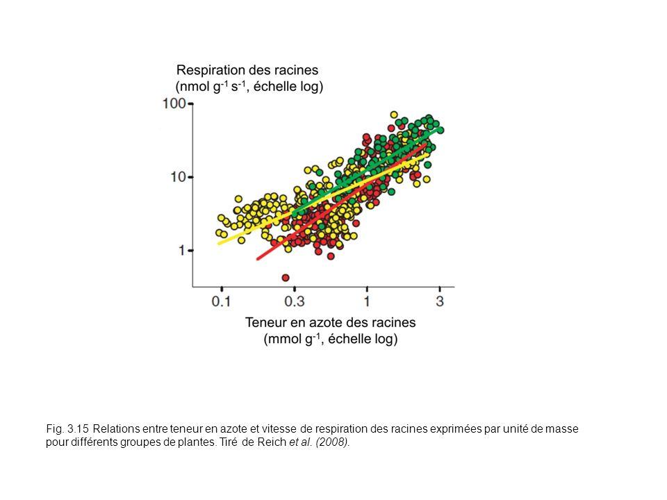 Fig. 3.15 Relations entre teneur en azote et vitesse de respiration des racines exprimées par unité de masse pour différents groupes de plantes. Tiré