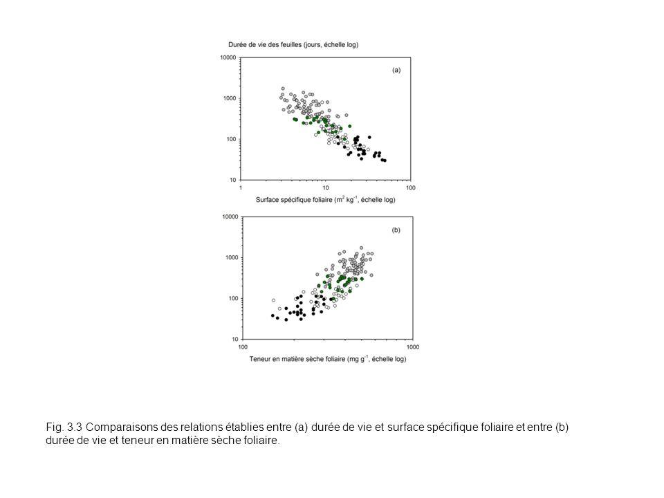 Fig. 3.3 Comparaisons des relations établies entre (a) durée de vie et surface spécifique foliaire et entre (b) durée de vie et teneur en matière sèch