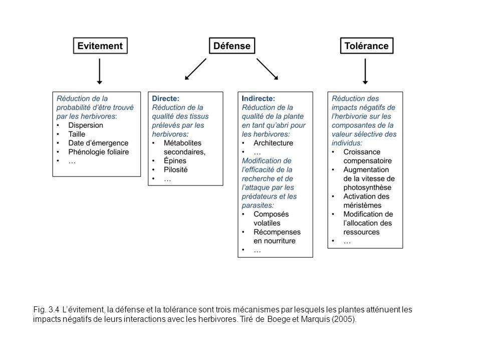 Fig. 3.4 Lévitement, la défense et la tolérance sont trois mécanismes par lesquels les plantes atténuent les impacts négatifs de leurs interactions av