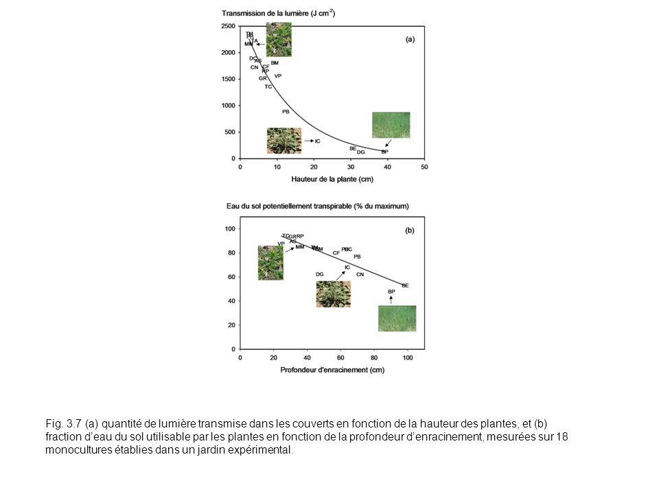 Fig. 3.7 (a) quantité de lumière transmise dans les couverts en fonction de la hauteur des plantes, et (b) fraction deau du sol utilisable par les pla