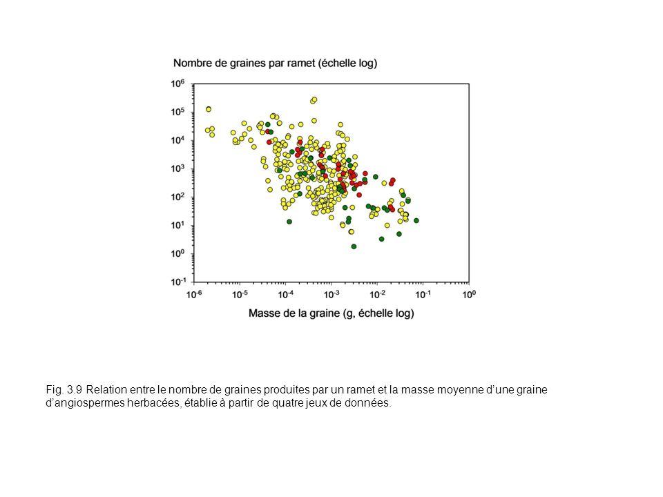 Fig. 3.9 Relation entre le nombre de graines produites par un ramet et la masse moyenne dune graine dangiospermes herbacées, établie à partir de quatr