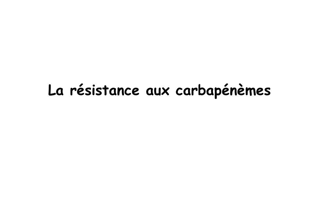 AMX AMC TIC TCC CAZ CF TZP CTX IPM MOX ATM FEP AMC PIP CRO FOX CXM MA ETP IPM MEM CFM K.pneumoniae : KPC-1