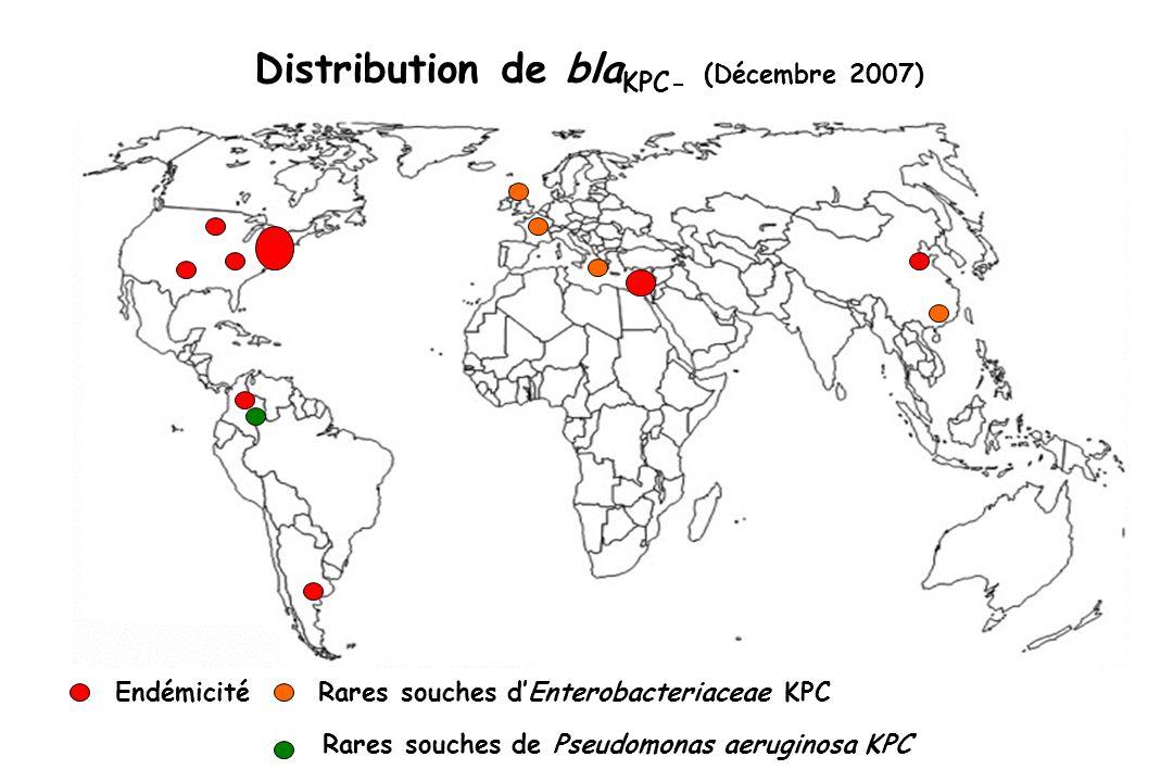 Rares souches dEnterobacteriaceae KPC Rares souches de Pseudomonas aeruginosa KPC Endémicité Distribution de bla KPC- (Décembre 2007)