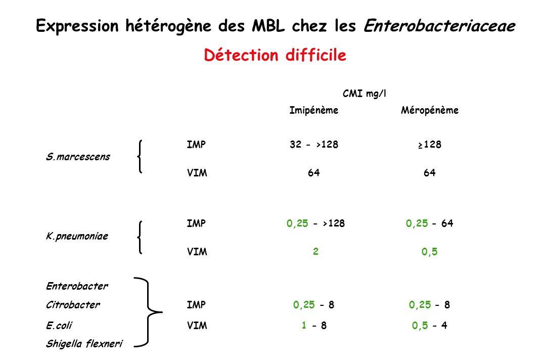 Expression hétérogène des MBL chez les Enterobacteriaceae Détection difficile CMI mg/l Imipénème Méropénème IMP 32 - >128 128 S.marcescens VIM 64 64 I