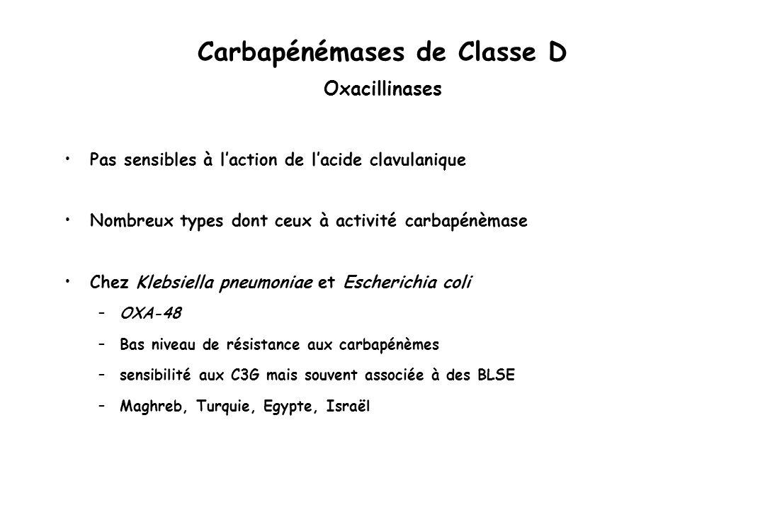 Carbapénémases de Classe D Oxacillinases Pas sensibles à laction de lacide clavulanique Nombreux types dont ceux à activité carbapénèmase Chez Klebsie