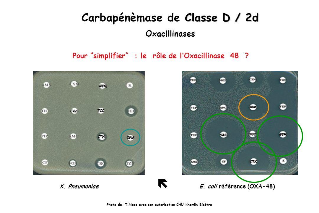 Pour simplifier : le rôle de l Oxacillinase 48 ? Classe D / 2d Carbapénèmase de Classe D / 2d Oxacillinases Photo de T.Nass avec son autorisation CHU