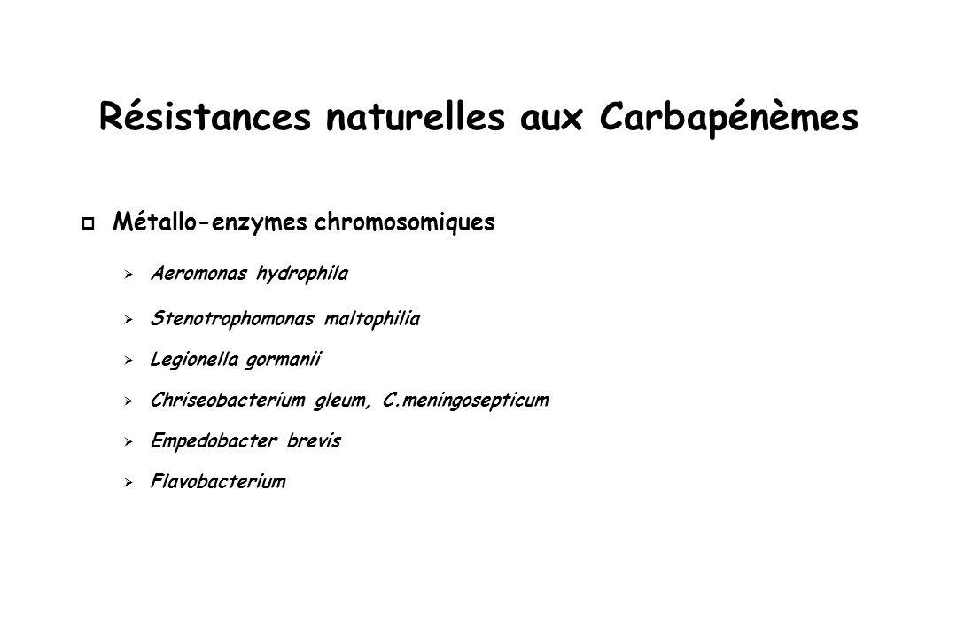 Résistances acquises aux Carbapénèmes p Enzyme de type carbapénèmase : –Classe A (sérine protéase) : KPC –Classe B (métallo enzyme) : VIM, IMP, NDM –Classe D (oxacillinases) : OXA-48 – p Enzyme non carbapénèmase + porine/efflux : –Classe C ou A + imperméabilité