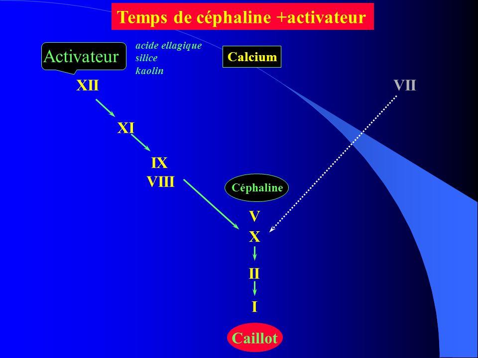 XII XI IX VIII VII X II I Caillot Céphaline V Temps de céphaline +activateur Activateur acide ellagique silice kaolin Calcium