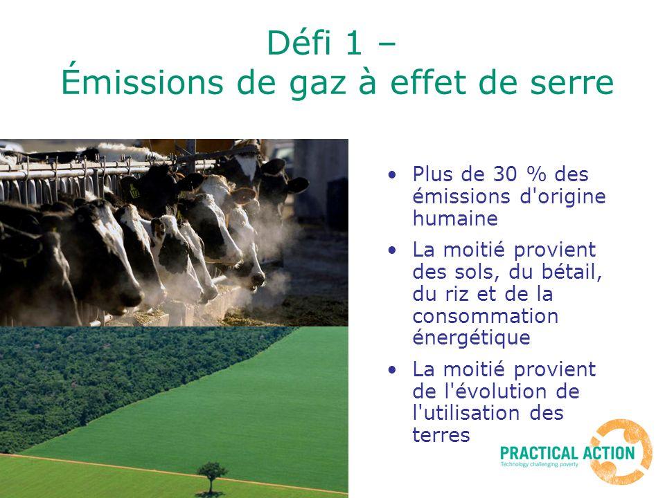 Défi 1 – Émissions de gaz à effet de serre Plus de 30 % des émissions d origine humaine La moitié provient des sols, du bétail, du riz et de la consommation énergétique La moitié provient de l évolution de l utilisation des terres