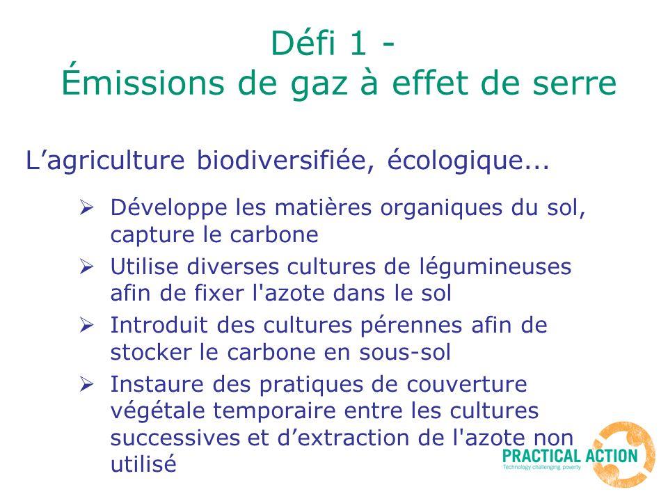 Lagriculture biodiversifiée, écologique... Développe les matières organiques du sol, capture le carbone Utilise diverses cultures de légumineuses afin