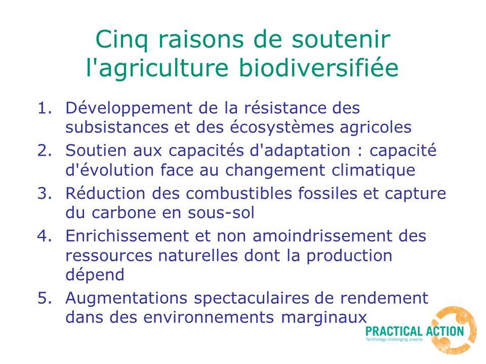 Cinq raisons de soutenir l'agriculture biodiversifiée 1.Développement de la résistance des subsistances et des écosystèmes agricoles 2.Soutien aux cap