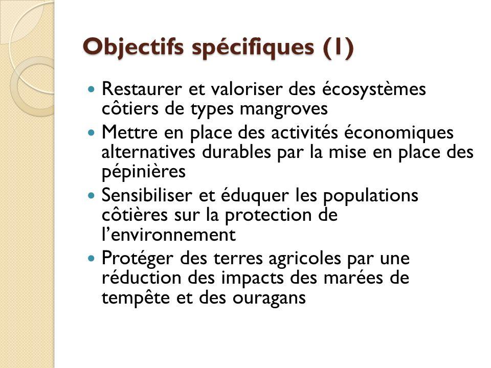 Objectifs spécifiques (1) Restaurer et valoriser des écosystèmes côtiers de types mangroves Mettre en place des activités économiques alternatives durables par la mise en place des pépinières Sensibiliser et éduquer les populations côtières sur la protection de lenvironnement Protéger des terres agricoles par une réduction des impacts des marées de tempête et des ouragans