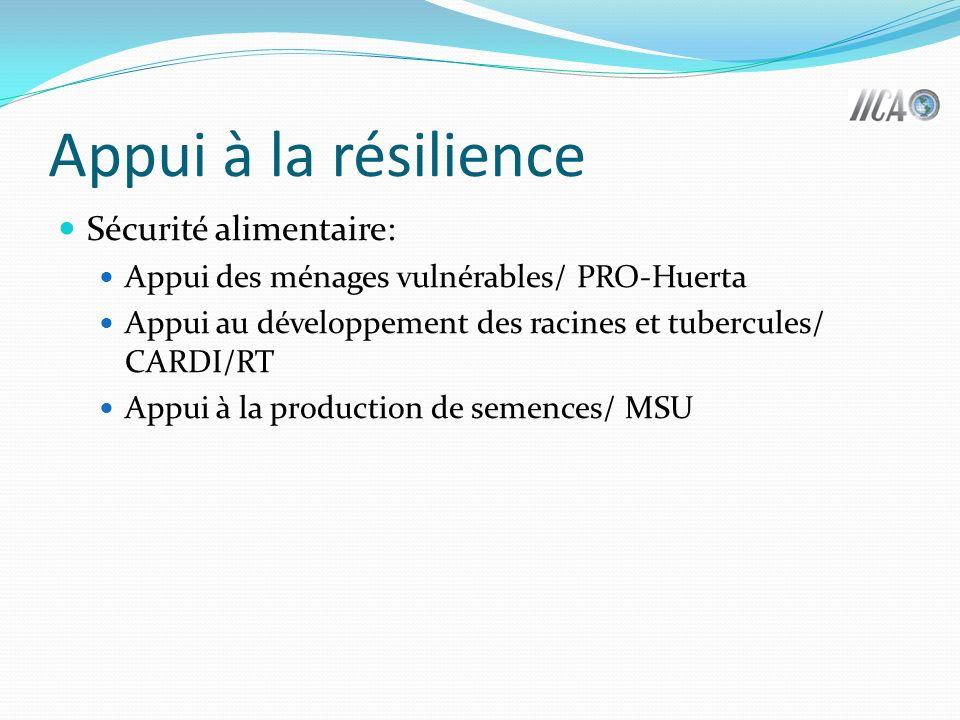 Appui à la résilience Sécurité alimentaire: Appui des ménages vulnérables/ PRO-Huerta Appui au développement des racines et tubercules/ CARDI/RT Appui à la production de semences/ MSU