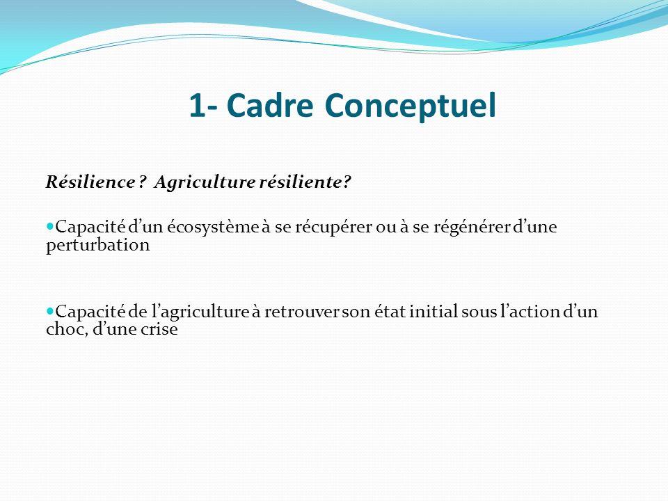 Résilience ? Agriculture résiliente? Capacité dun écosystème à se récupérer ou à se régénérer dune perturbation Capacité de lagriculture à retrouver s