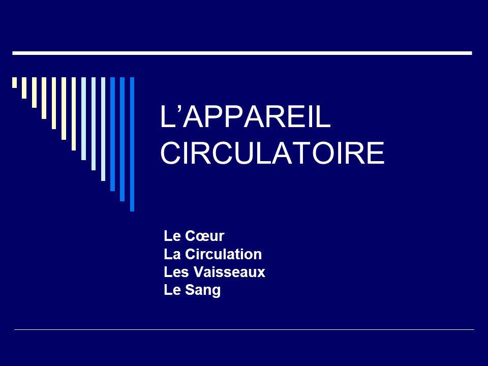 LAPPAREIL CIRCULATOIRE Le Cœur La Circulation Les Vaisseaux Le Sang