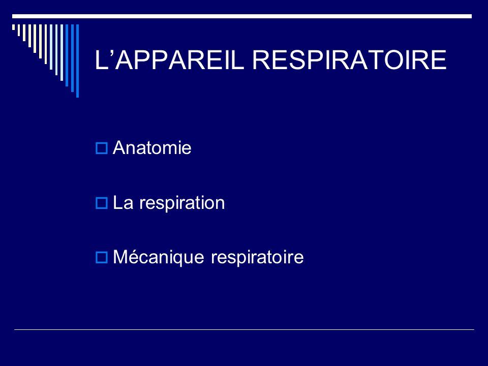 LAPPAREIL RESPIRATOIRE Anatomie La respiration Mécanique respiratoire