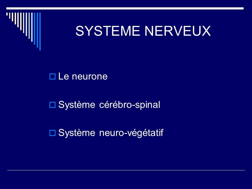 SYSTEME NERVEUX Le neurone Système cérébro-spinal Système neuro-végétatif