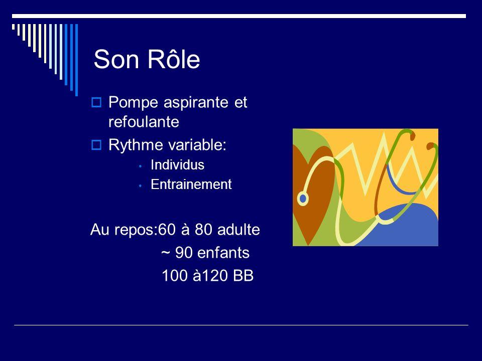 Son Rôle Pompe aspirante et refoulante Rythme variable: Individus Entrainement Au repos:60 à 80 adulte ~ 90 enfants 100 à120 BB