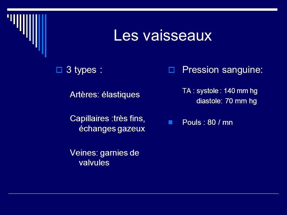 Les vaisseaux 3 types : Artères: élastiques Capillaires :très fins, échanges gazeux Veines: garnies de valvules Pression sanguine: TA : systole : 140