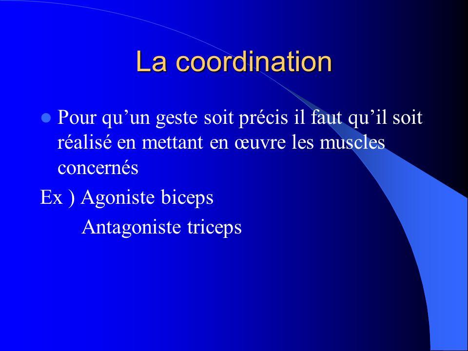 La coordination Pour quun geste soit précis il faut quil soit réalisé en mettant en œuvre les muscles concernés Ex ) Agoniste biceps Antagoniste trice
