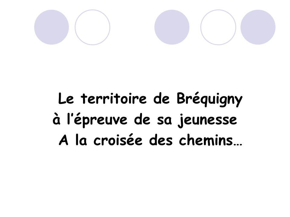 Le territoire de Bréquigny à lépreuve de sa jeunesse A la croisée des chemins…