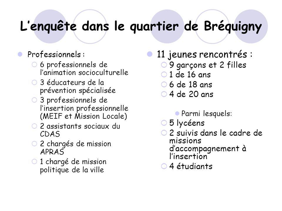 Lenquête dans le quartier de Bréquigny Professionnels : 6 professionnels de lanimation socioculturelle 3 éducateurs de la prévention spécialisée 3 pro