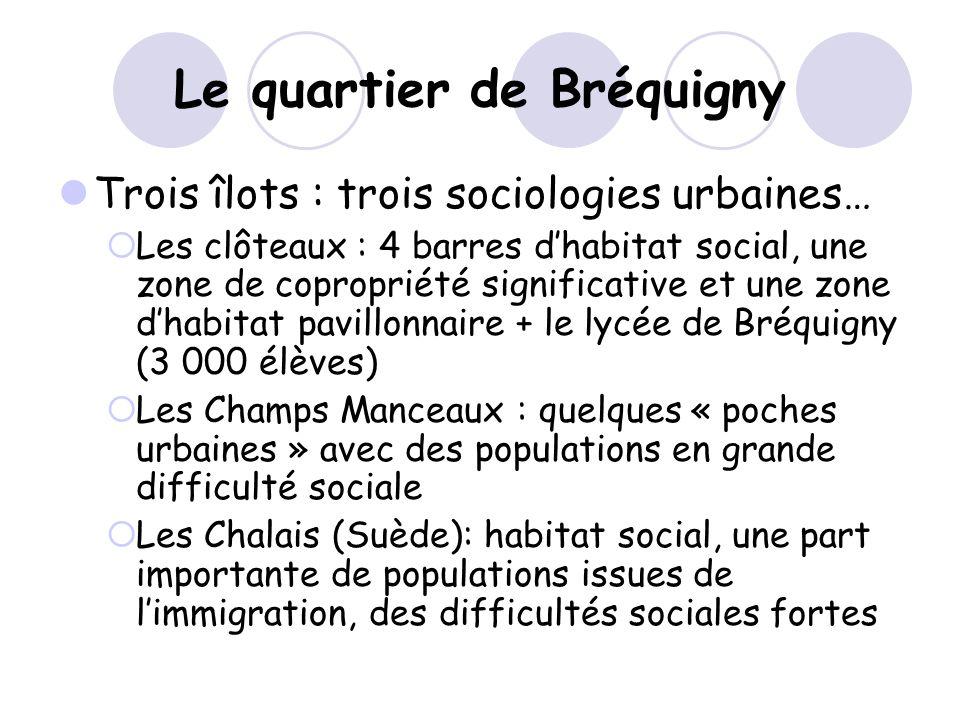 Le quartier de Bréquigny Trois îlots : trois sociologies urbaines… Les clôteaux : 4 barres dhabitat social, une zone de copropriété significative et u