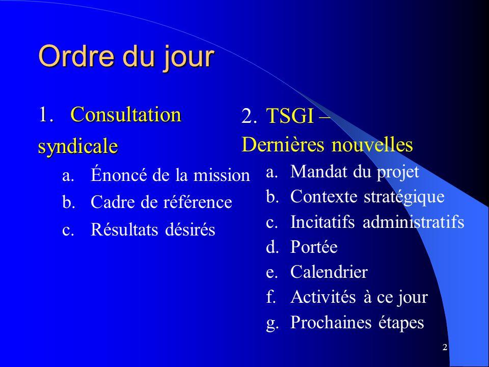 3 Consultations TSGI/Syndicats a.