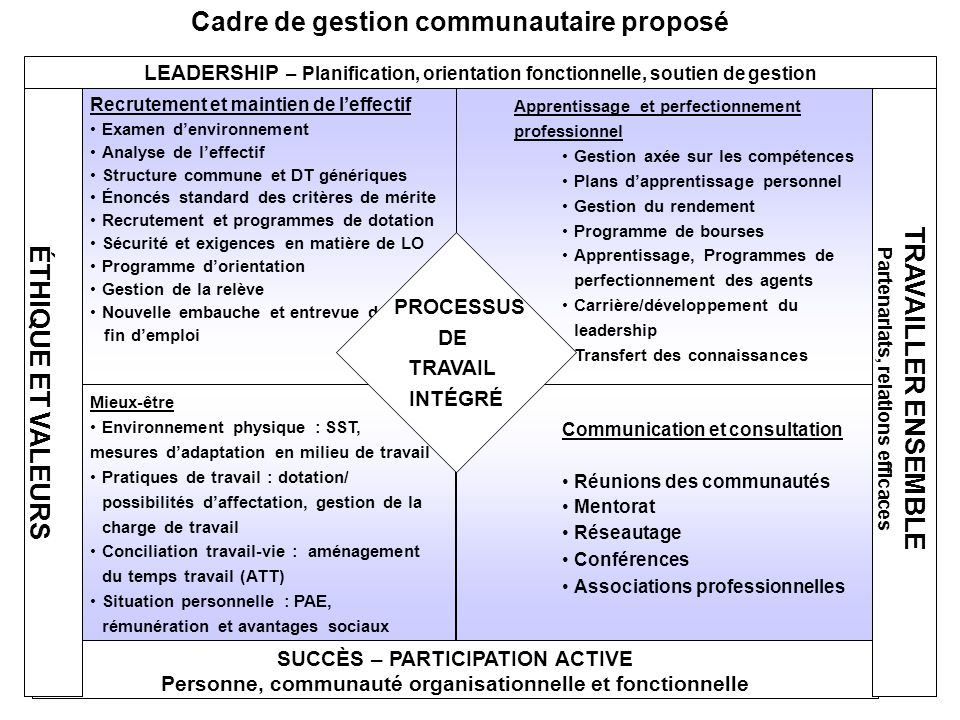 Recrutement et maintien de leffectif Examen denvironnement Analyse de leffectif Structure commune et DT génériques Énoncés standard des critères de mé