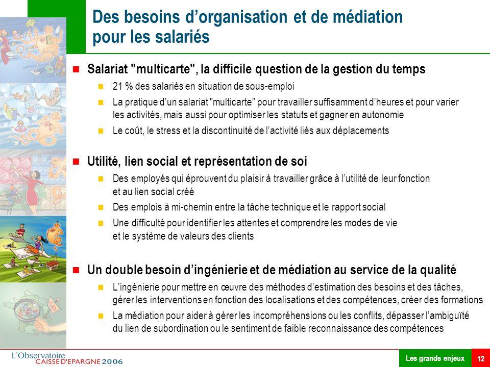 12 Des besoins dorganisation et de médiation pour les salariés Les grands enjeux Salariat