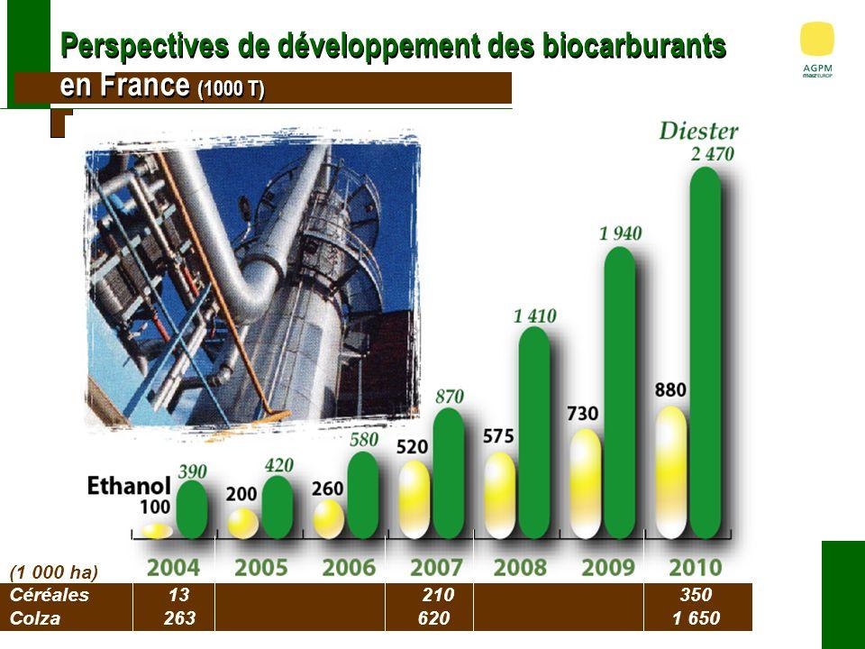 Perspectives de développement des biocarburants en France (1000 T) (1 000 ha) Céréales13 210 350 Colza2636201 650