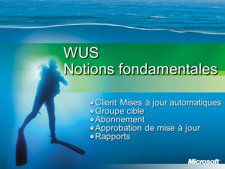 WUS Notions fondamentales Client Mises à jour automatiques Groupe cible Abonnement Approbation de mise à jour Rapports