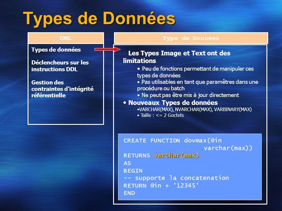 Types de Données DML Types de données Déclencheurs sur les instructions DDL Gestion des contraintes dintégrité référentielle Type de Données Les Types