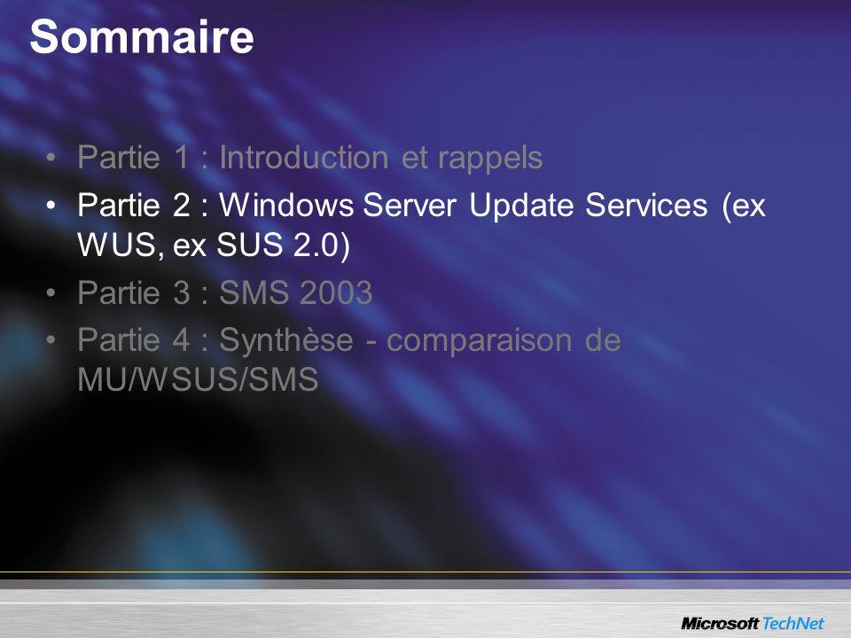 Sommaire Partie 1 : Introduction et rappels Partie 2 : Windows Server Update Services (ex WUS, ex SUS 2.0) Partie 3 : SMS 2003 Partie 4 : Synthèse - c